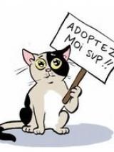 Adoptez Moi